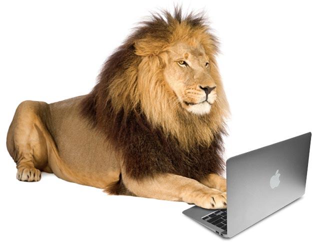 e93eb_Lion-Pic1