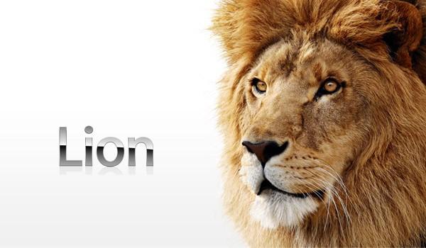 lion1110224140813