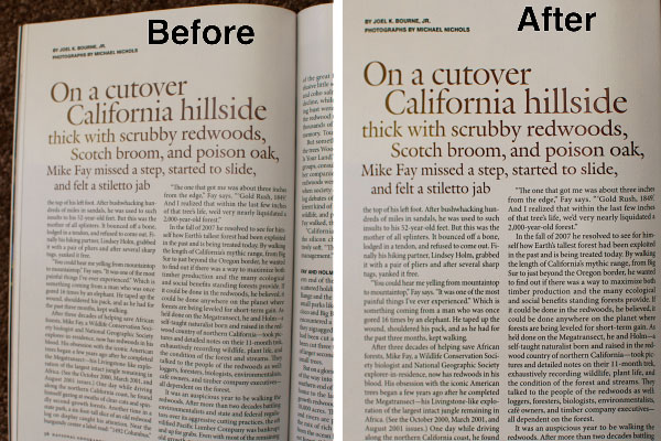 Prizmo Before and After OCR