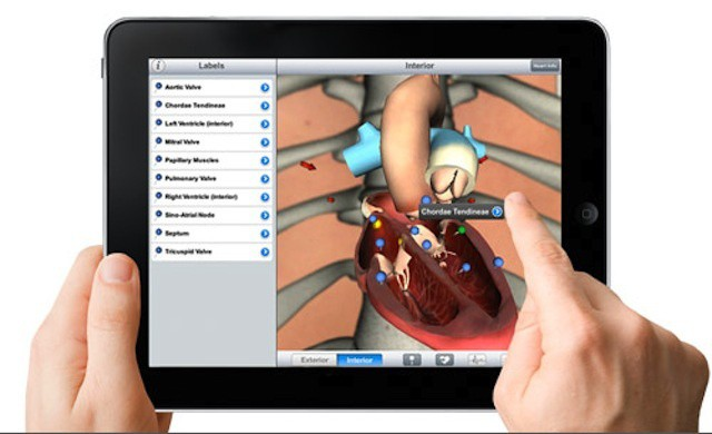 ipad-health-demo