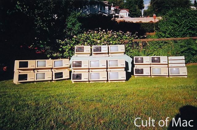 Wozniac Wall Of Lisas