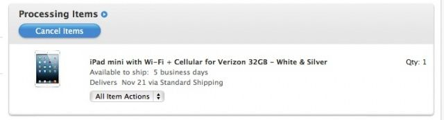 iPad Mini Delivery Screenshot