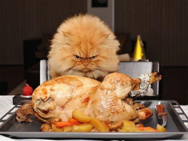 thanksgiving_640_11 (1)