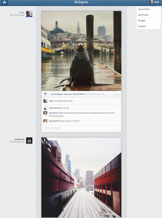 instagramwebsitescreenshot