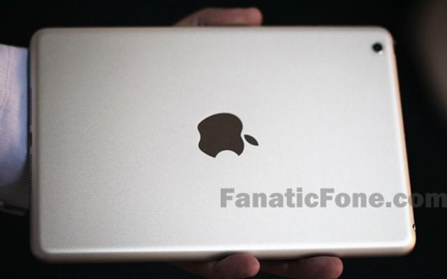 iPad-mini-2-panel