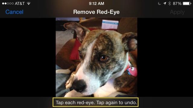 Red-eye? What red-eye?