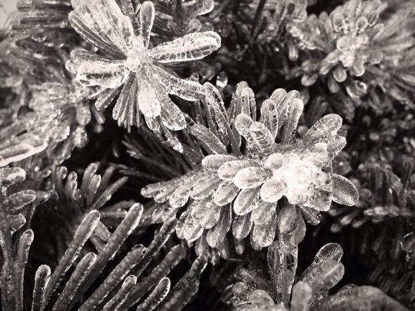 *icecrystals