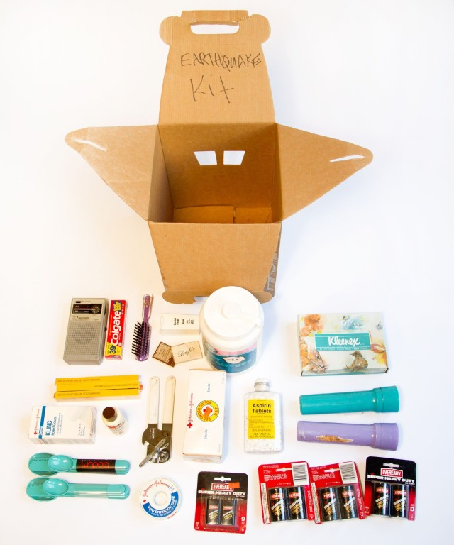 <em>Jane's Earthquake Kit</em>