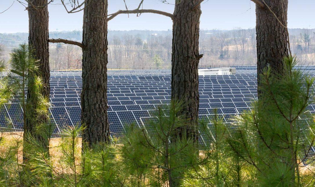 Apple's new solar farm breaks the record for non-utility company. Photo: Apple