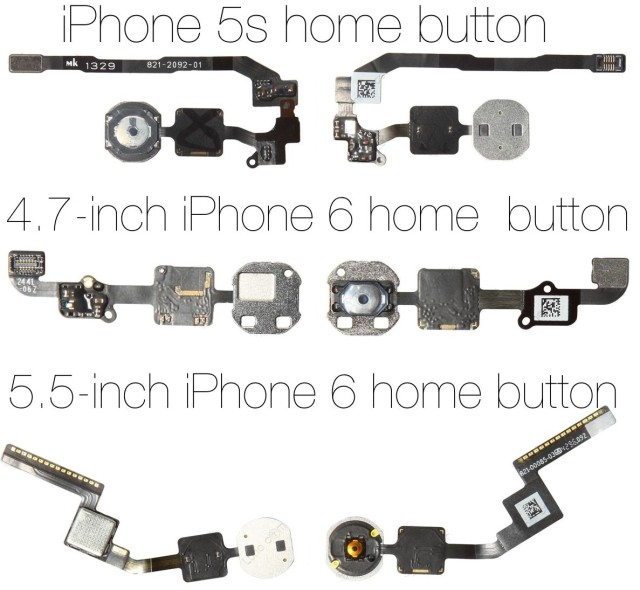 iPhone6homebuttons