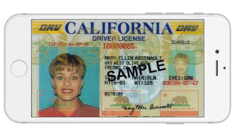 driver-ID-iPhone