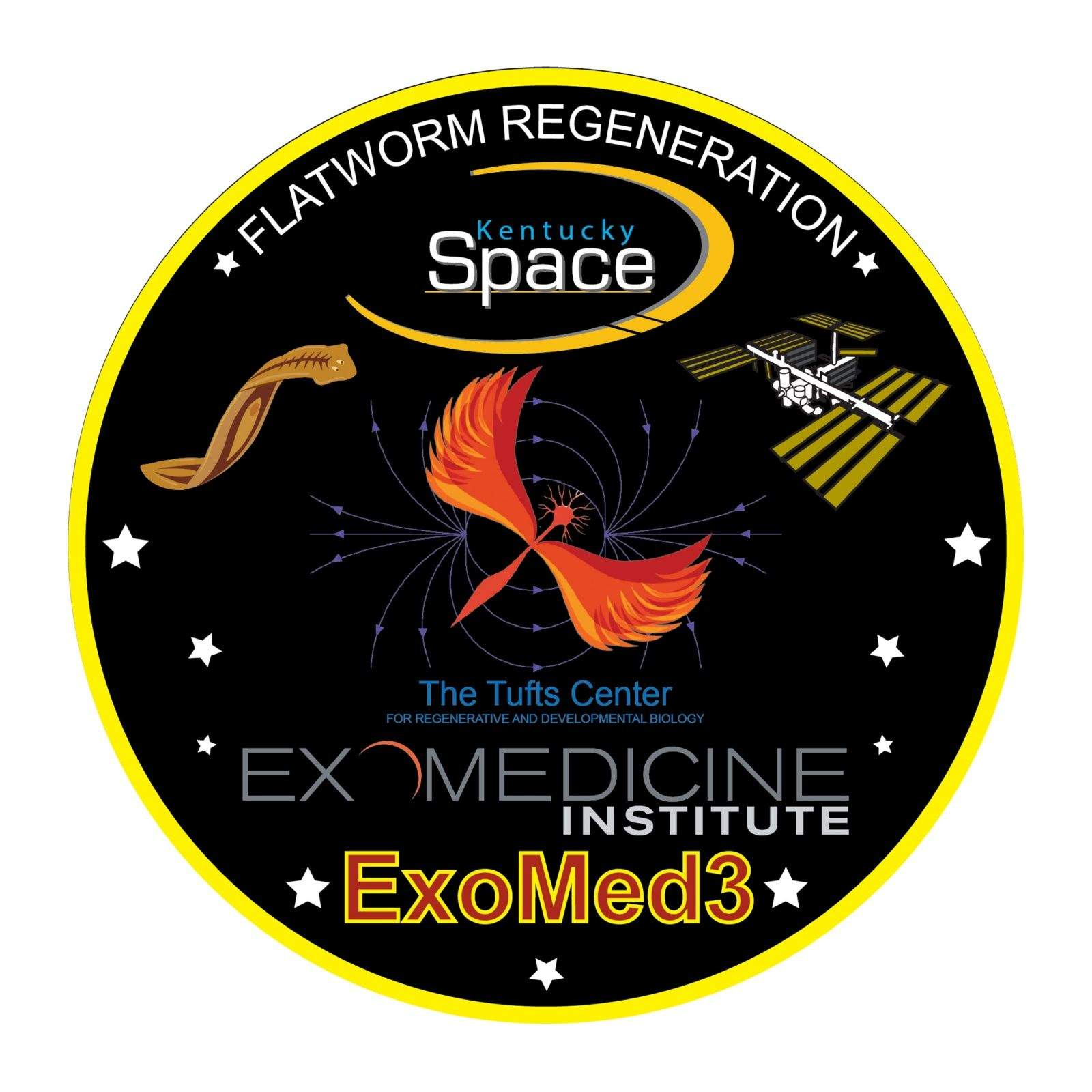 Flatworms are headed to the International Space Station and their sacrifice in the name of research gets a salute on the Kentucky Space mission patch.