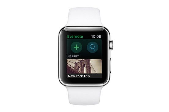 Evernote on the Apple Watch lets you can dictate notes, view recent ones and also set reminders