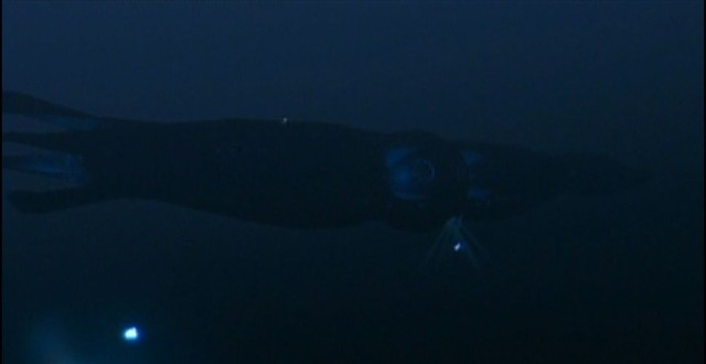 The SeaQuest was shaped like a squid. Why wouldn't it be? Photo: NBC