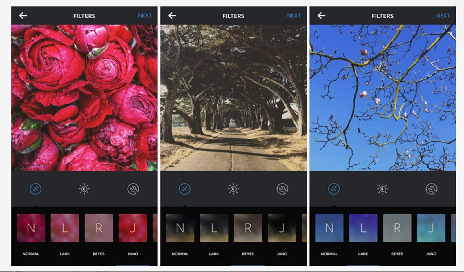 Lark, Reyes and Juno are three new filters for Instagram. Photo: Instagram