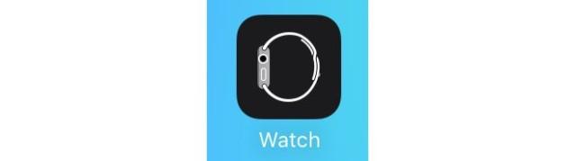 ios-9-beta-2-watch-app