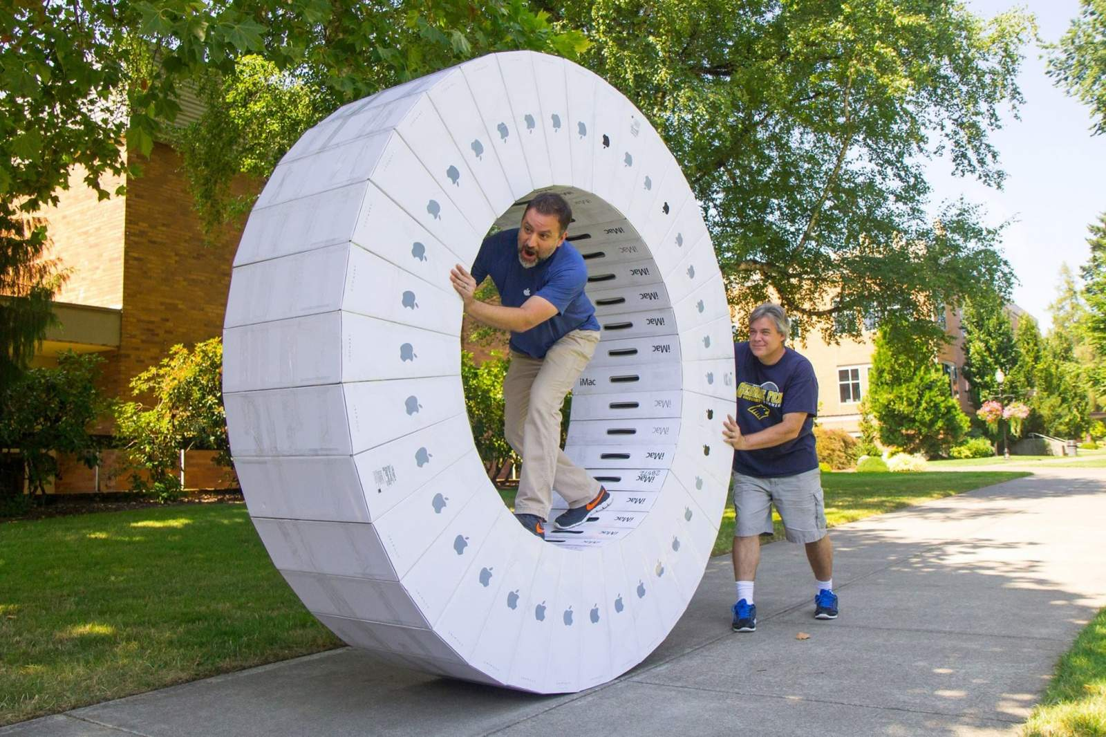 This cardboard hamster wheel would cost you $1800 make... and that's if you bought the boxes empty.