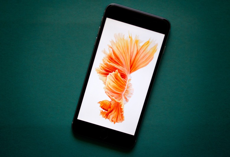 The iPhone isn't ditching LCD screens.