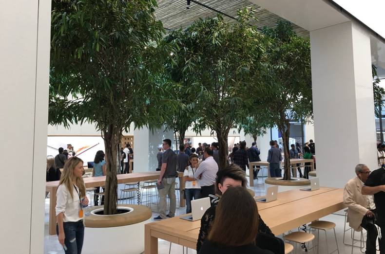 A glimpse at the leafy interior of the new Apple Store.