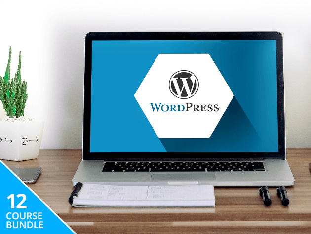 Master the hows and whys of WordPress, and build your own professional-grade website.