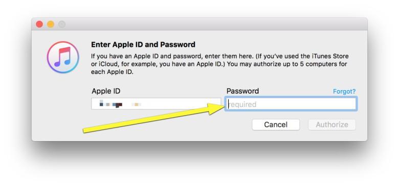 Password goes here.