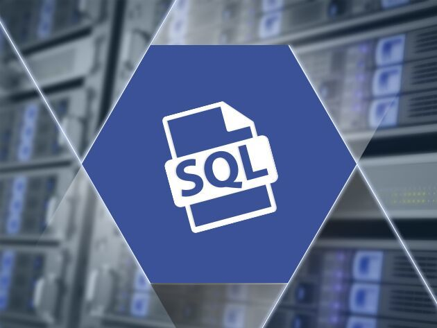 Earn some major business cred by becoming a data wizard through SQL training.