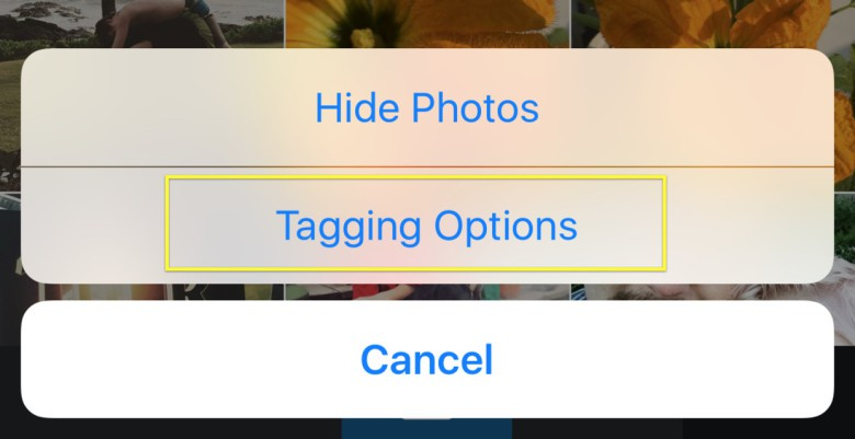 This will let you choose automatic or manual tagging.