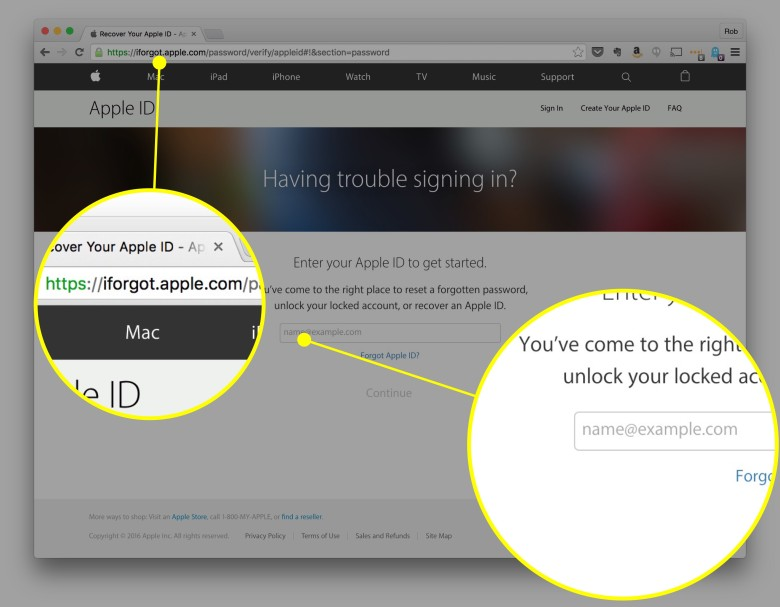 Enter your Apple ID here.