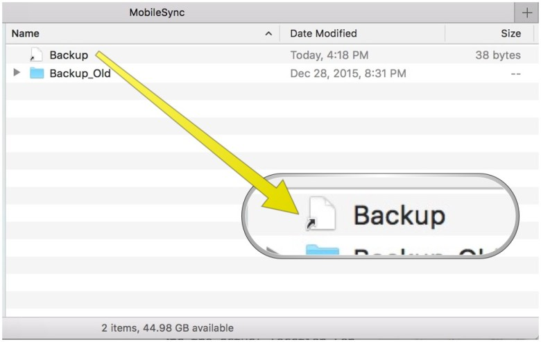 If you follow the steps, you should see a generic Backup file icon like this.