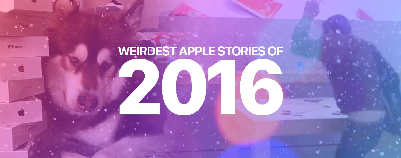 Wierdest Stories 2016