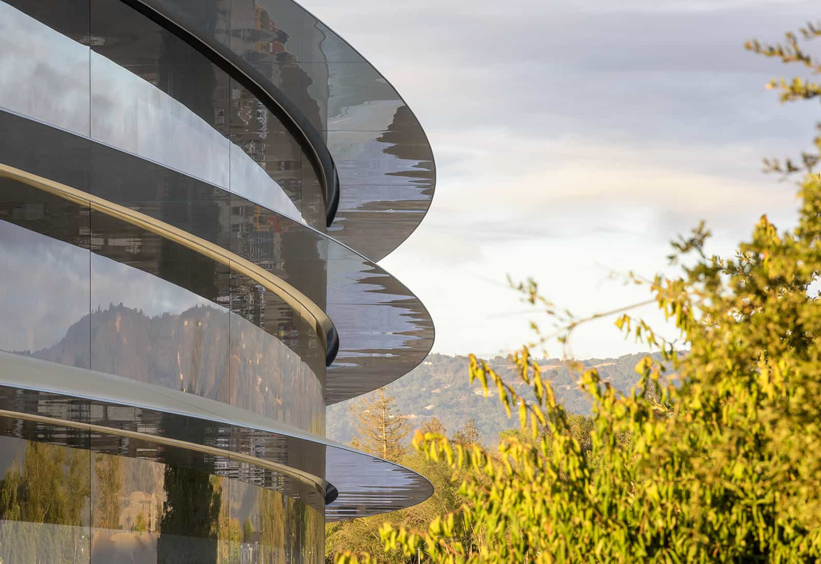 Apple Park Close up