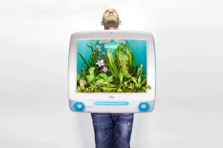 Mac planter