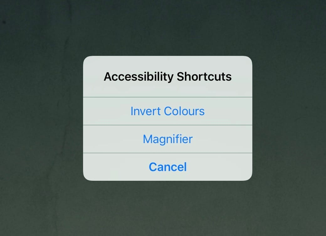 If you have more than one function assigned to the triple-tap shortcut, you get to choose what to do.