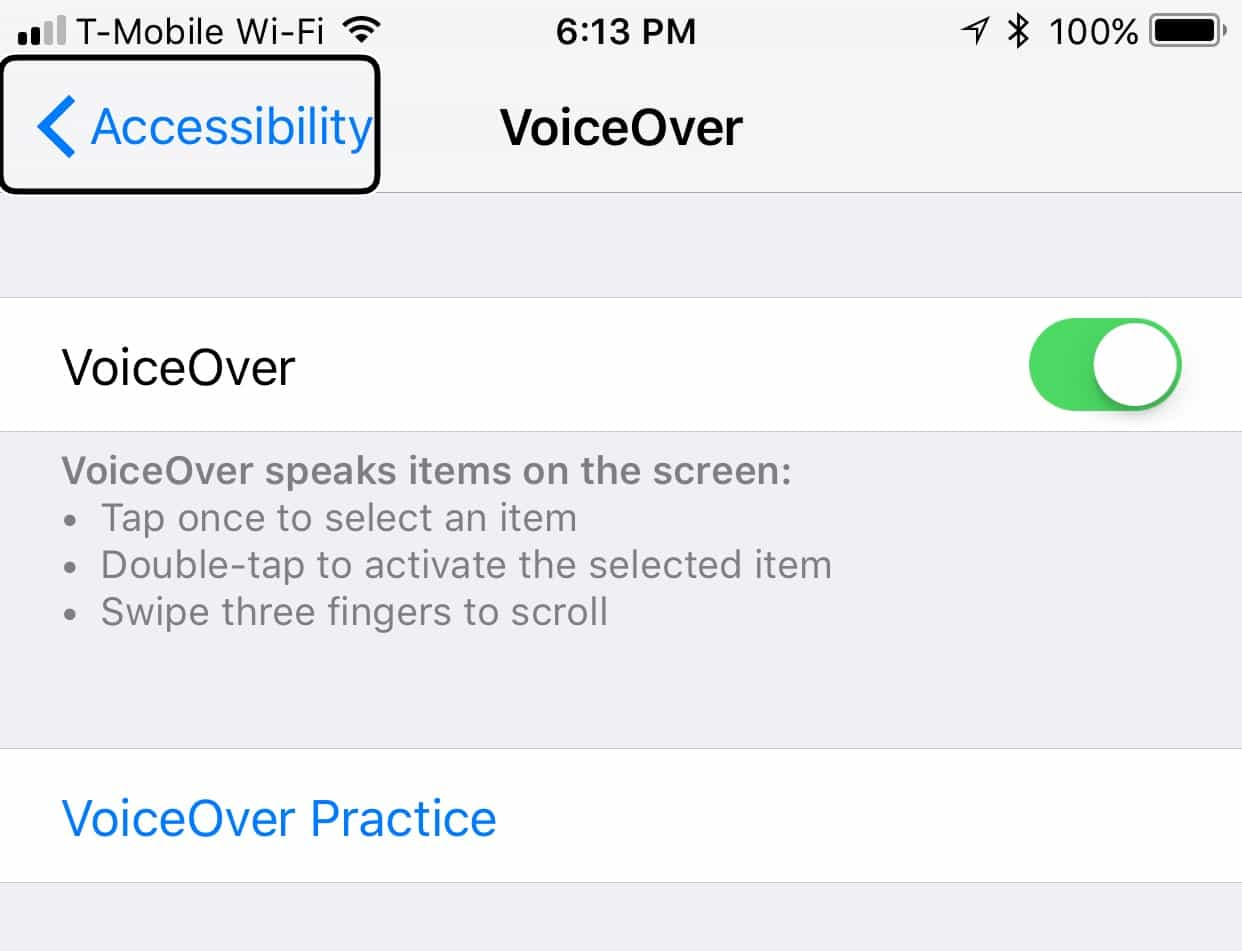 voiceover controls in system settings