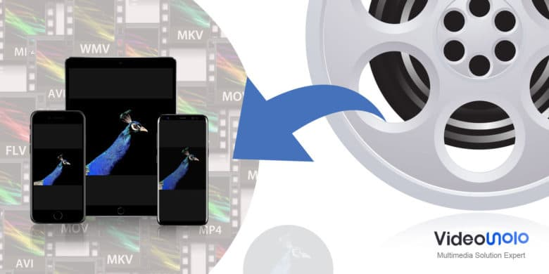 Want to get convert video from one format to another? VideoSolo Free Video Converter makes it easy.
