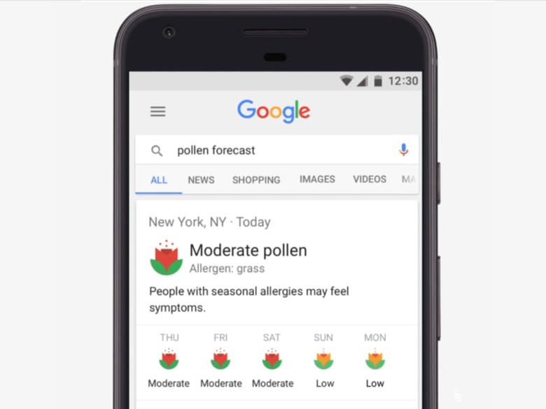 Google search pollen forecasts