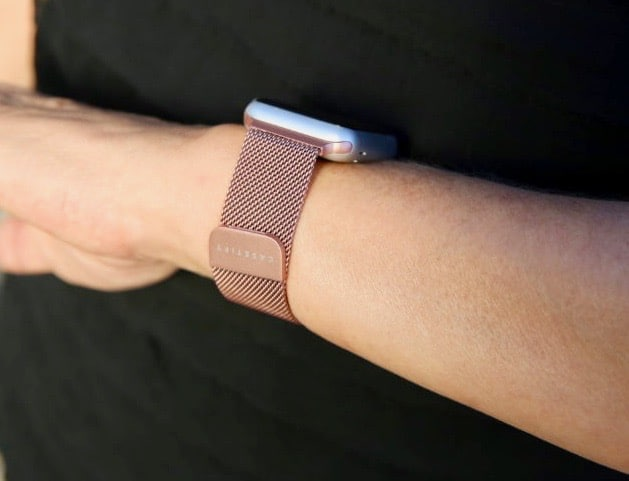 Casetify Stainless Steel Mesh Band
