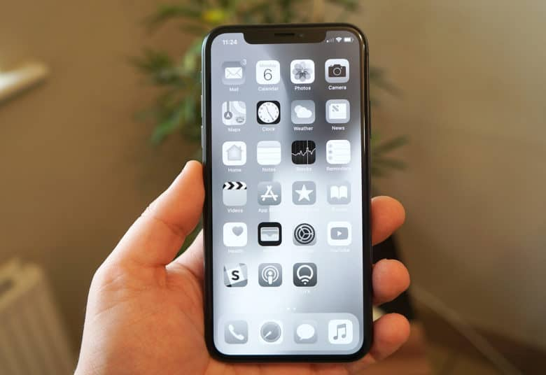 grayscale oled iPhone x