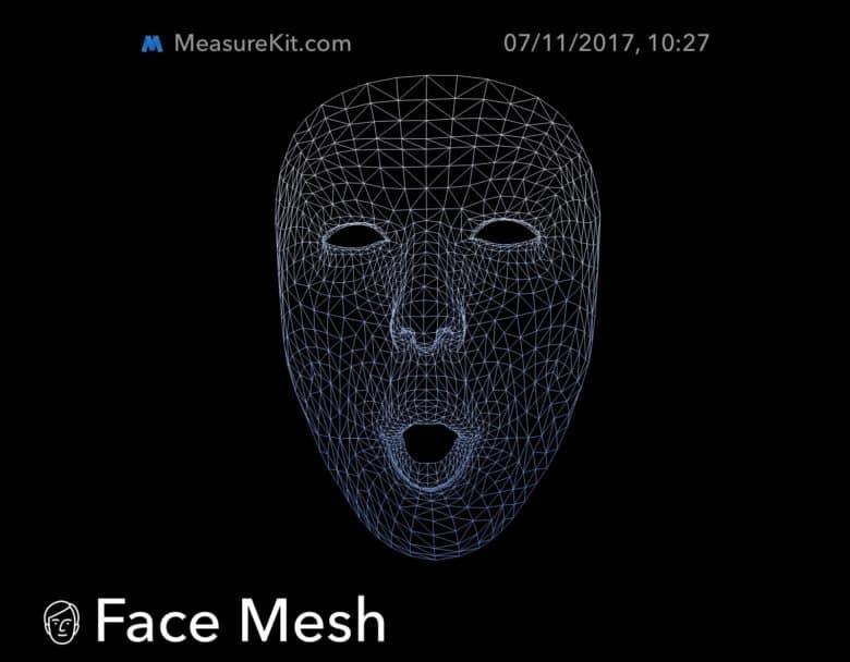 face mesh