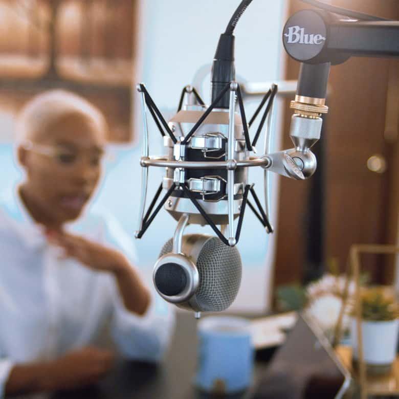 Blue Designs compass mic boom