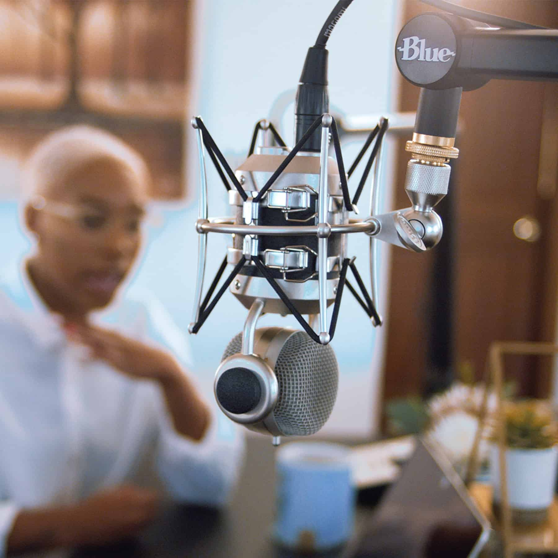 Blue Designs compass mic boom