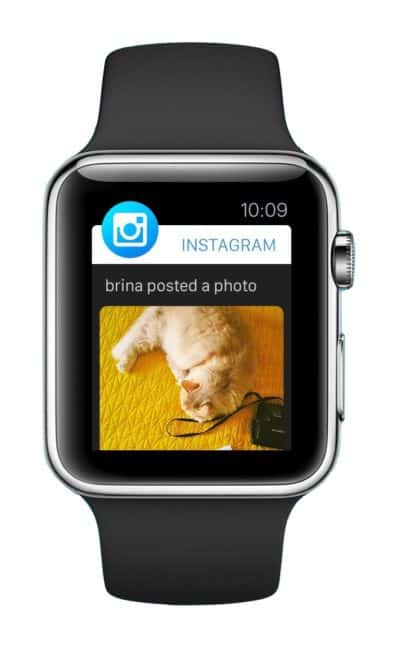 Instagram on Apple Watch