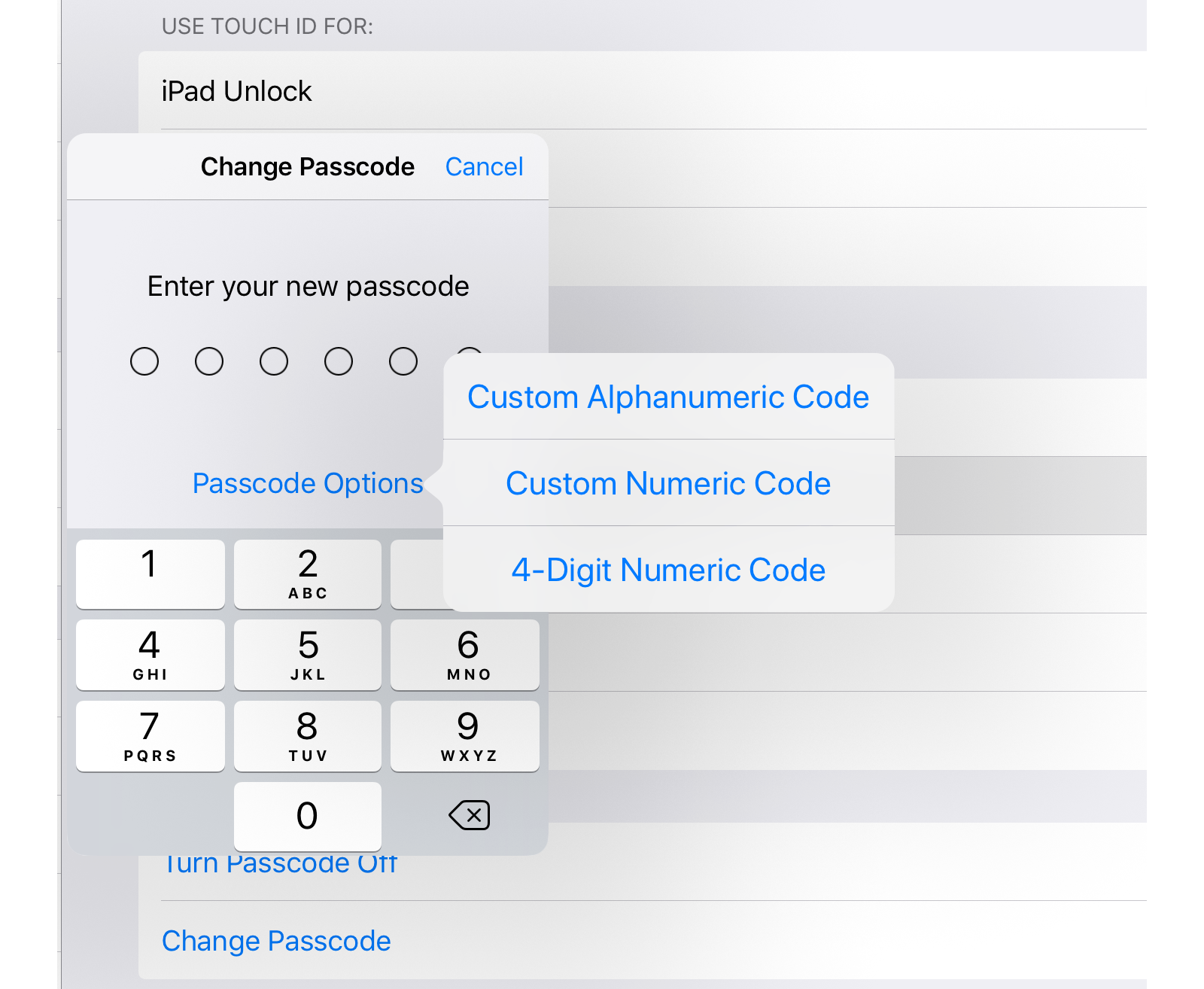 These are your passcode options.