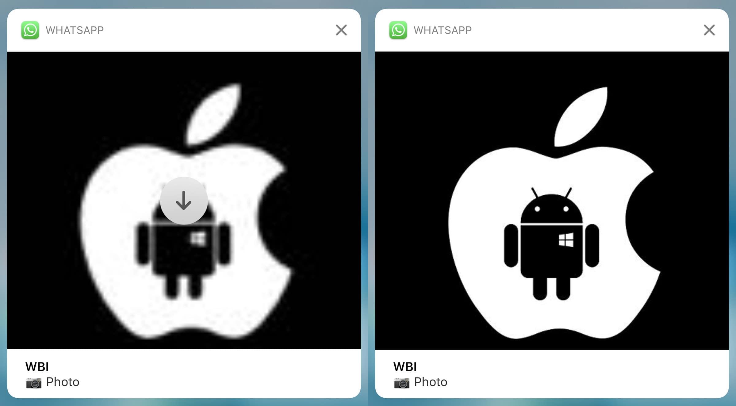 WhatsApp media previews on iOS