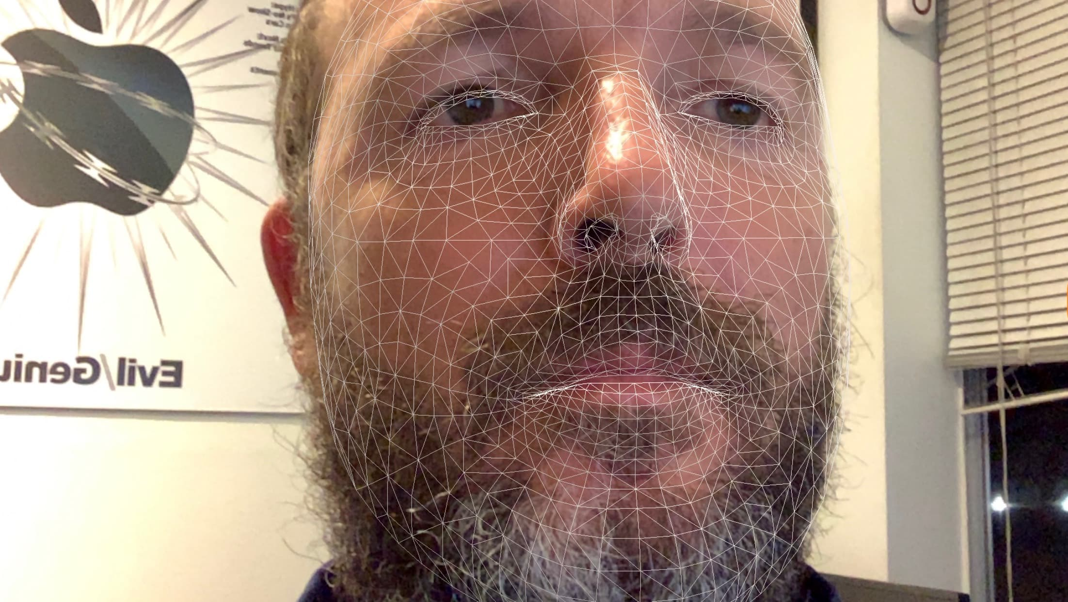 FaceID scan