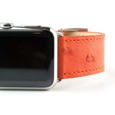 Clessant's orange ostrich band.