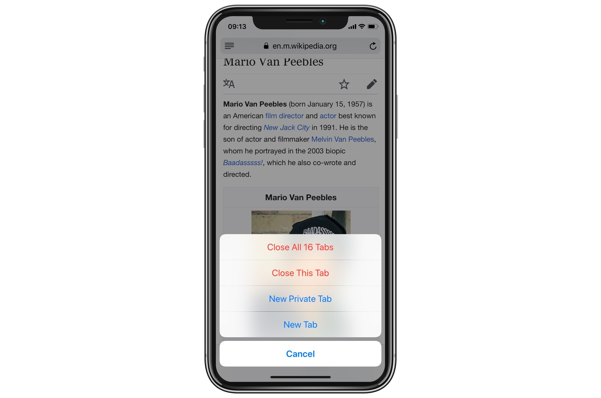 Close all tabs in mobile Safari.