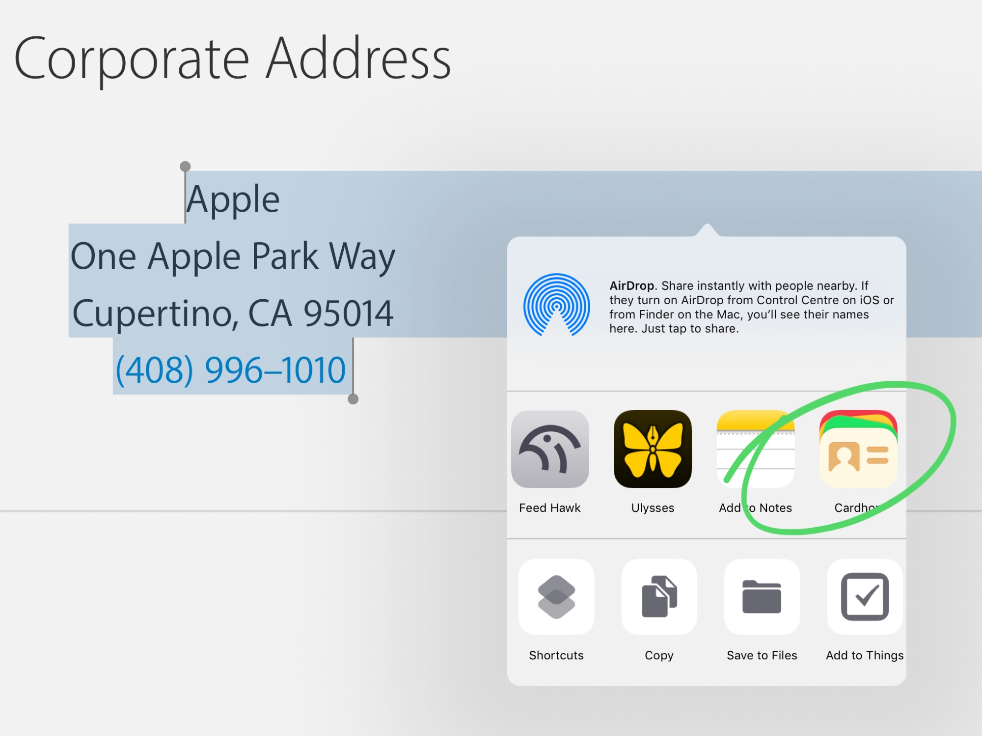 Add a new contact using the share sheet.