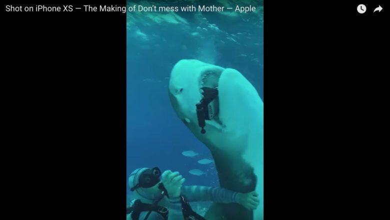 iPhone shark