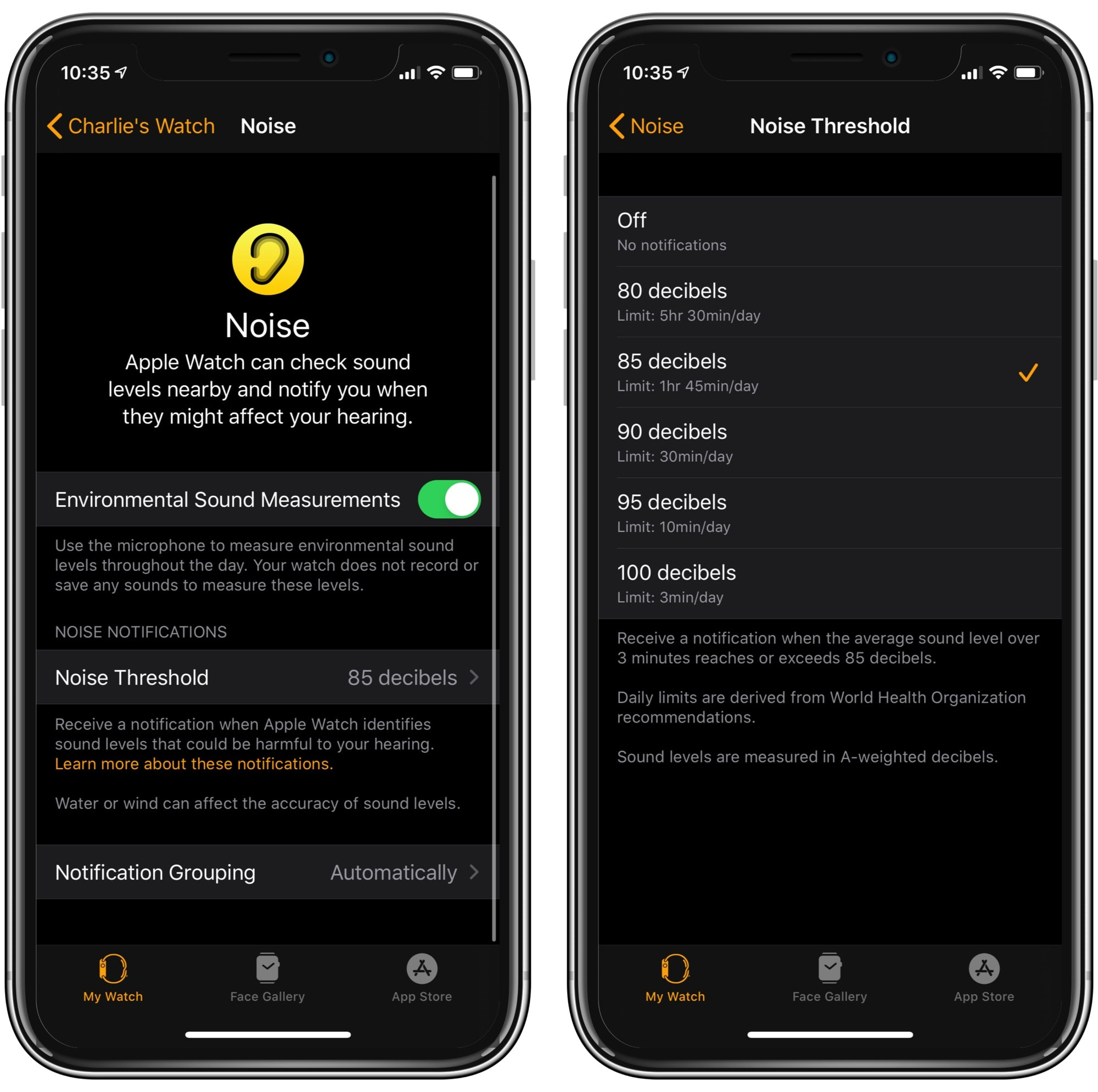 Apple Watch's Noise settings on your iPhone.